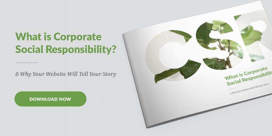 CSR story online - ebook